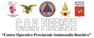logo COP_2015