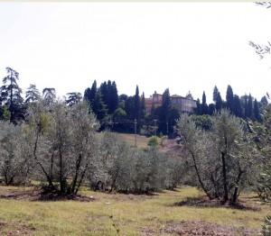 Terreni e Villa di Mondeggi Lappeggi