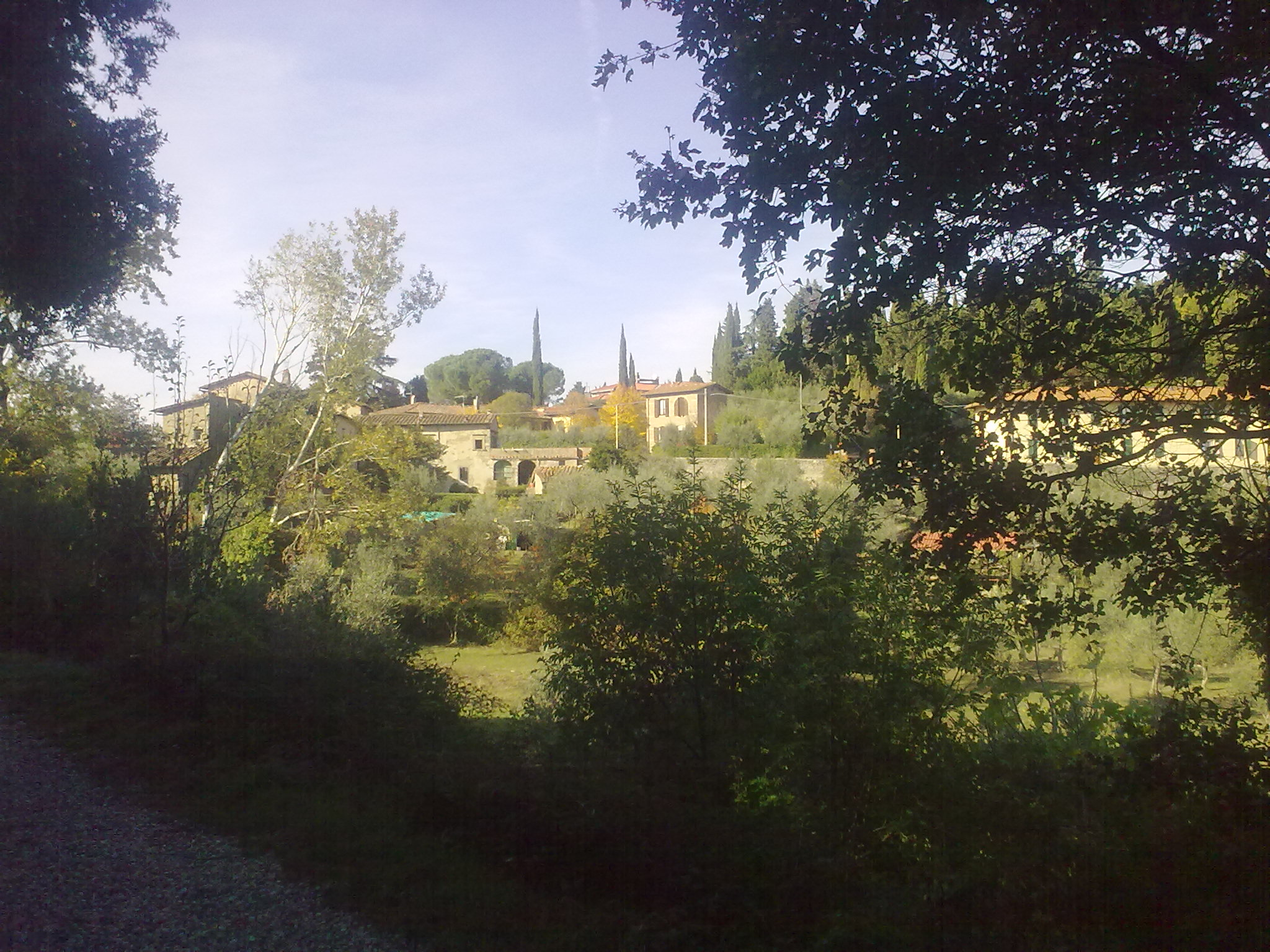 Panorama su Fiesole dall'Ingresso A - prato ai Pini (Giuliana Profeti)