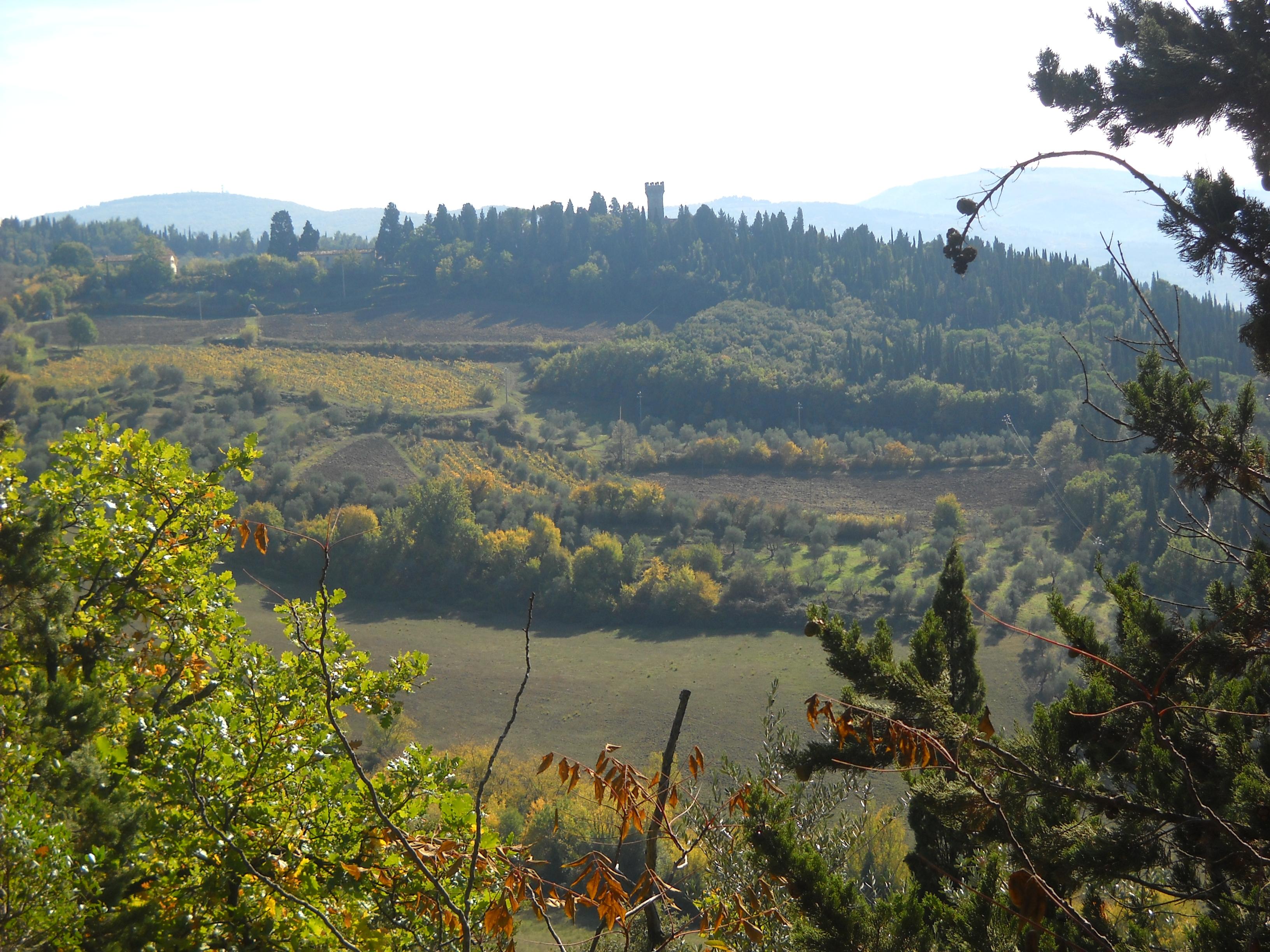 Panorama sul colle di Vincigliata dal sentiero CAI n. 7 (di Giuliana Profeti)