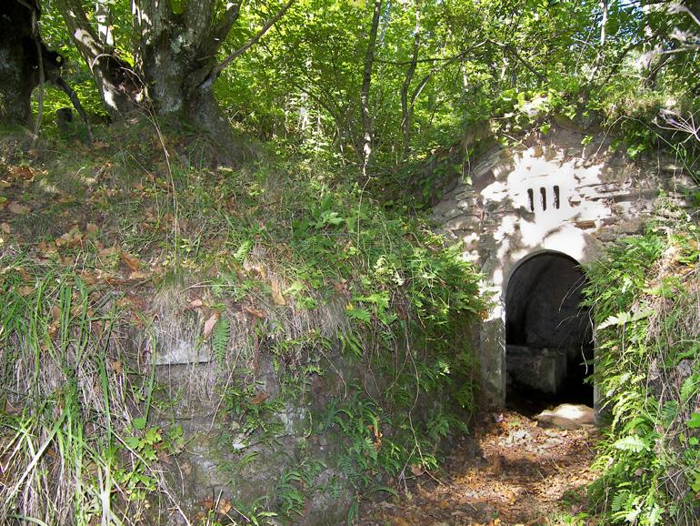 Burraia caratterizzata dall'occhio a grata con tre fessure,è fra le burraie meglio conservate (di Pontassieve Natura www.pontassievenatura.it)