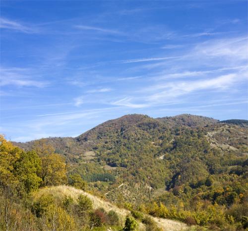 La vetta del Monte Giovi (di Pontassieve Natura www.pontassievenatura.it)