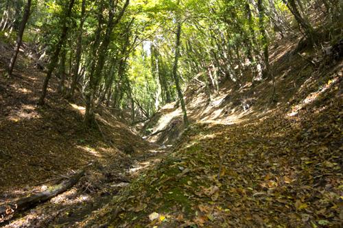 L'ombrosa e stretta Valle dell'Inferno (di Pontassieve Natura www.pontassievenatura.it)