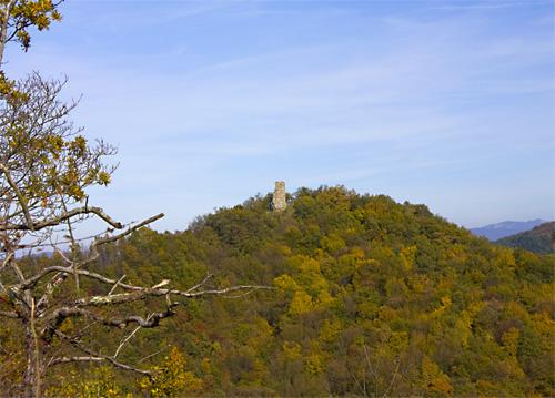 I ruderi della torre in vetta al Monterotondo (di Pontassieve Natura www.pontassievenatura.it)