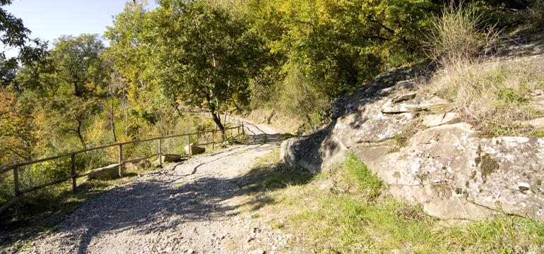 Sentiero della Guardia, costeggiato da una staccionata (di Pontassieve Natura www.pontassievenatura.it)