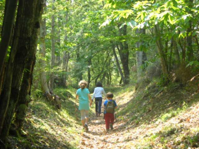 Il sentiero in località Fontassenzio (di Giuliana Profeti)