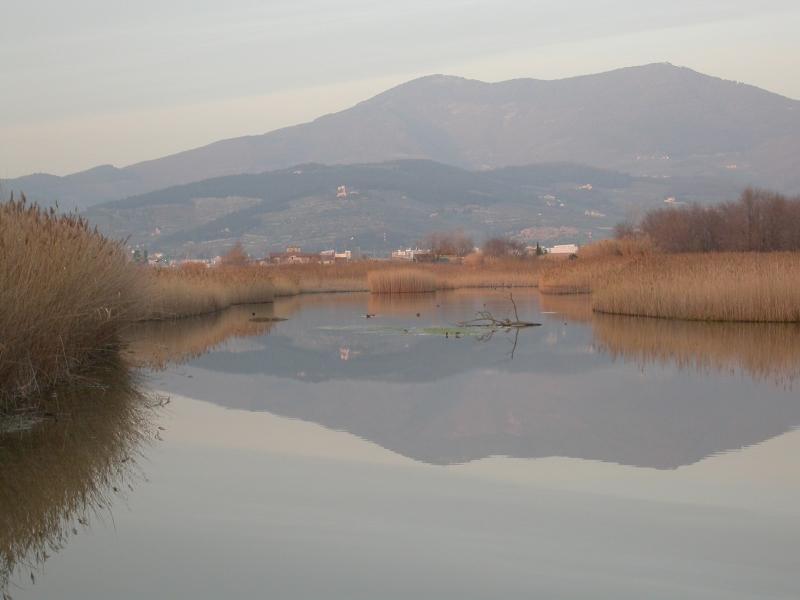 Monte Morello si rispecchia nel Lago Calice (di Carlo Scoccianti)
