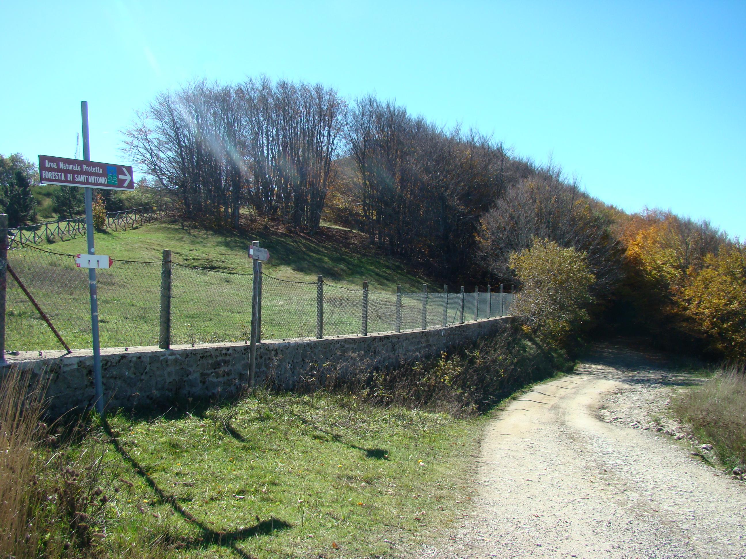 Bivio al punto di accesso alla Foresta di Sant'Antonio in località Secchieta (di Giuliana Profeti)