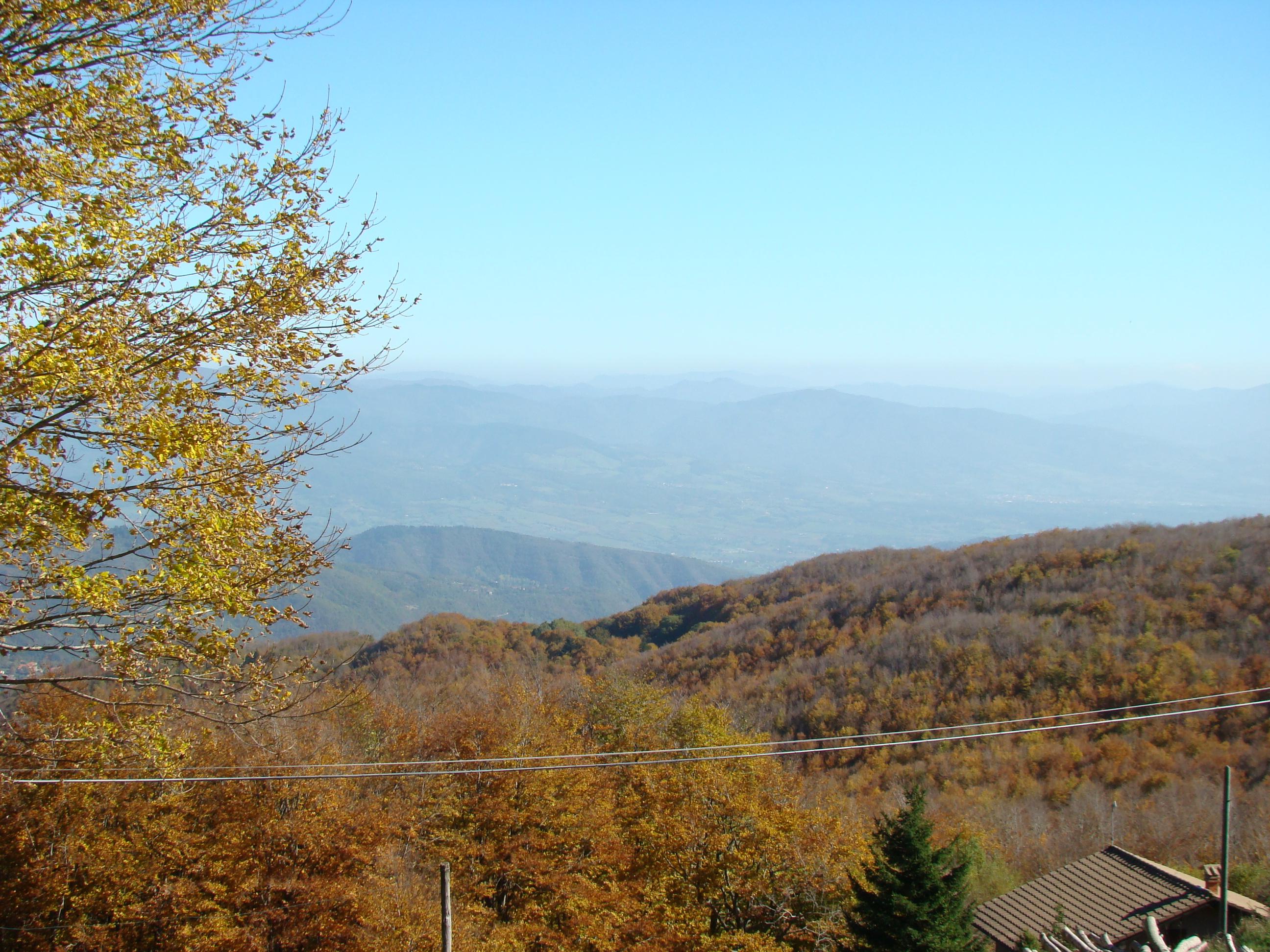 Panorama verso Montemignaio dalla strada vicinale del poggio (di Giuliana Profeti)