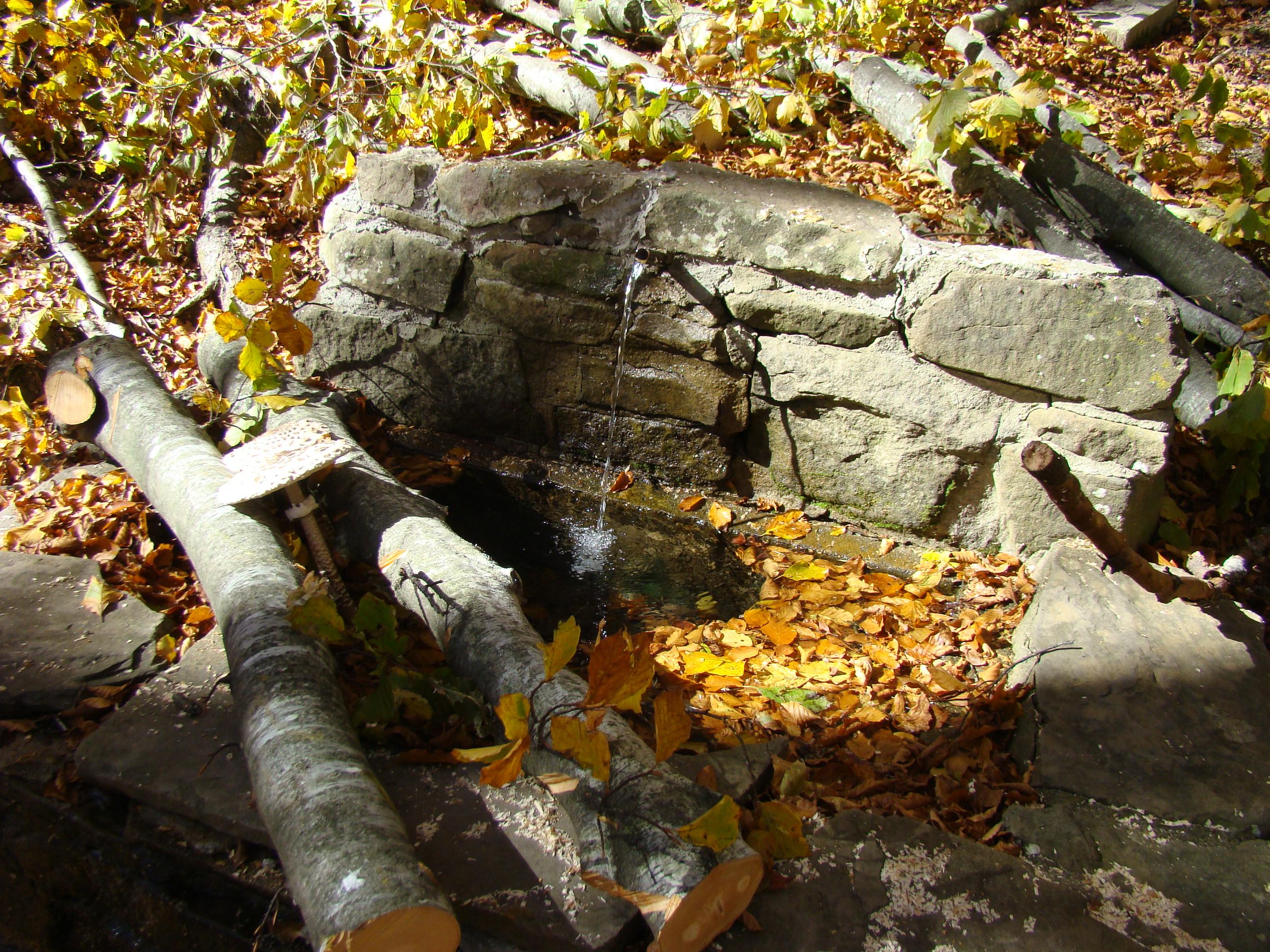 Fontana lungo il sentiero didattico (di Giuliana Profeti)