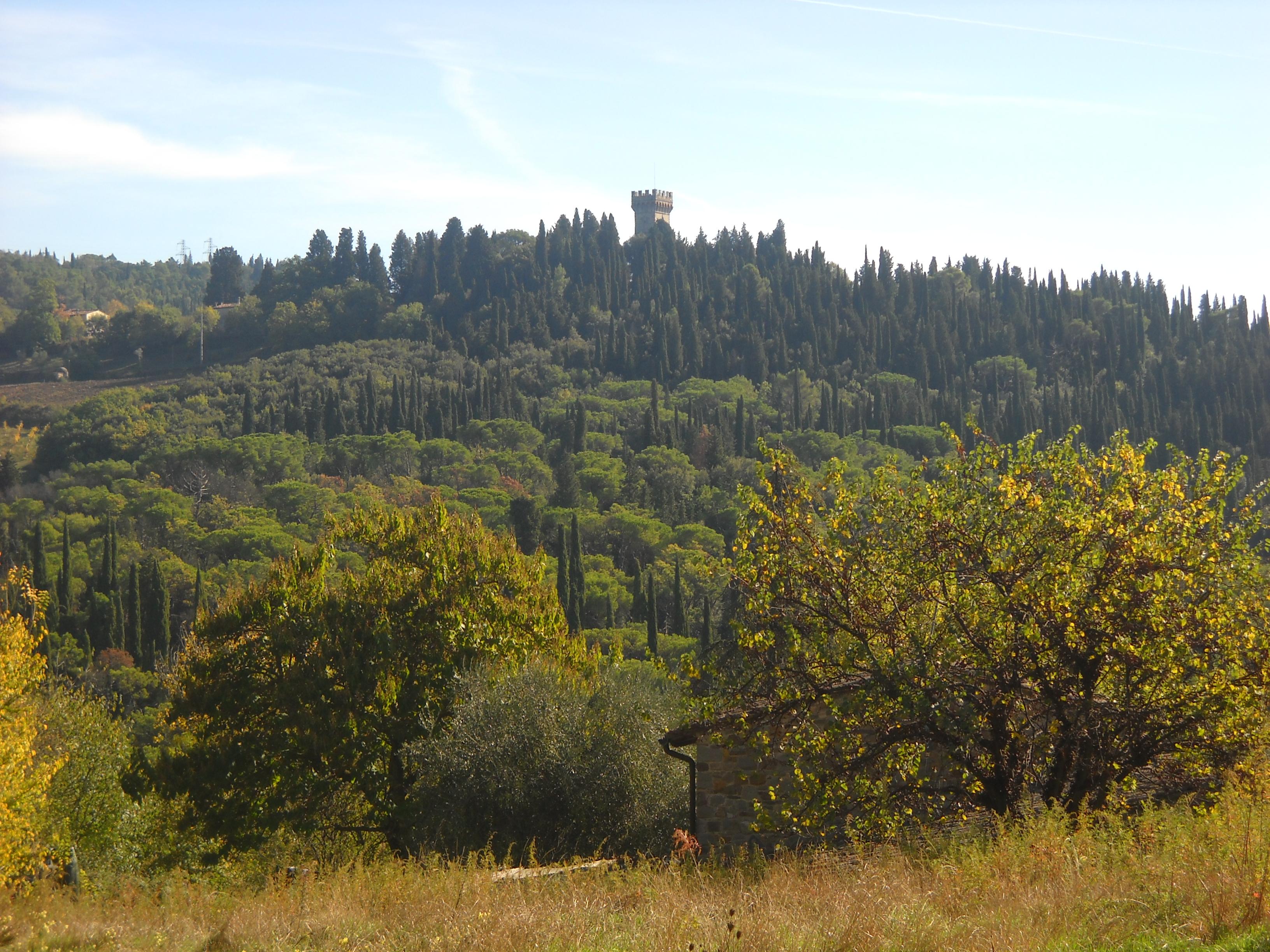 Panorama dal sentiero CAI n. 7 (di Giuliana Profeti)
