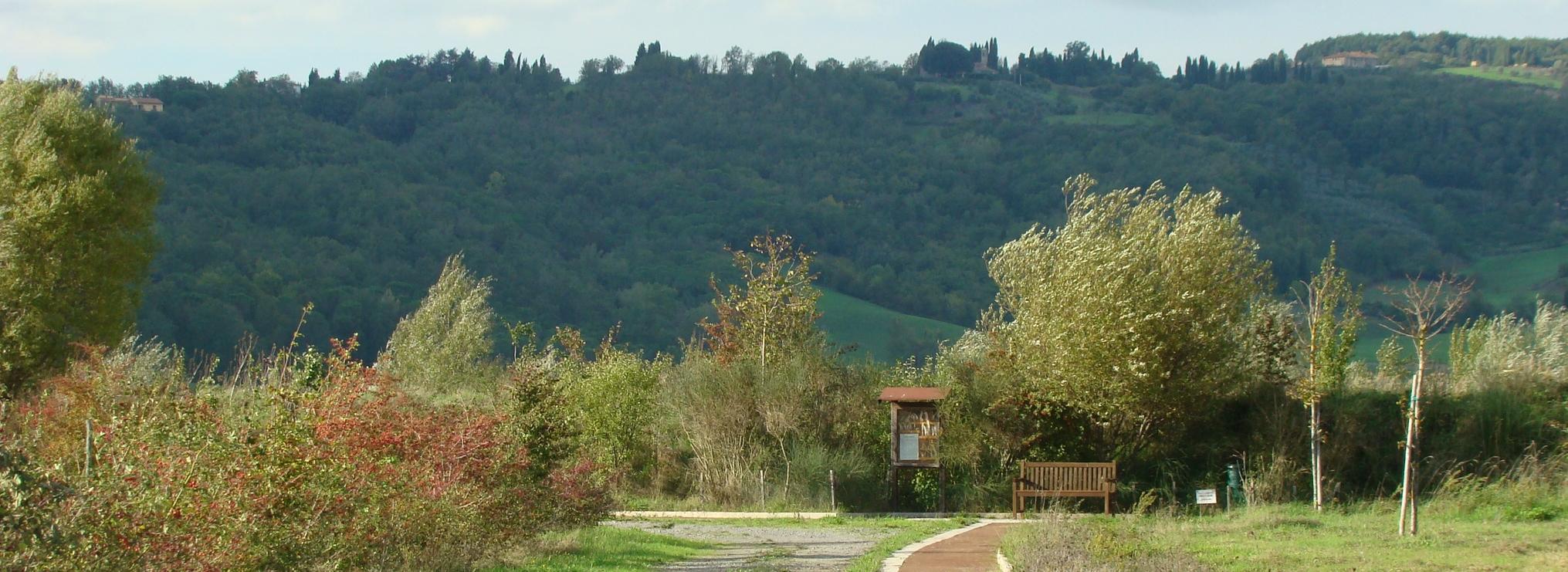 Panchina e pennario lungo il percorso naturalistico (di Giuliana Profeti)