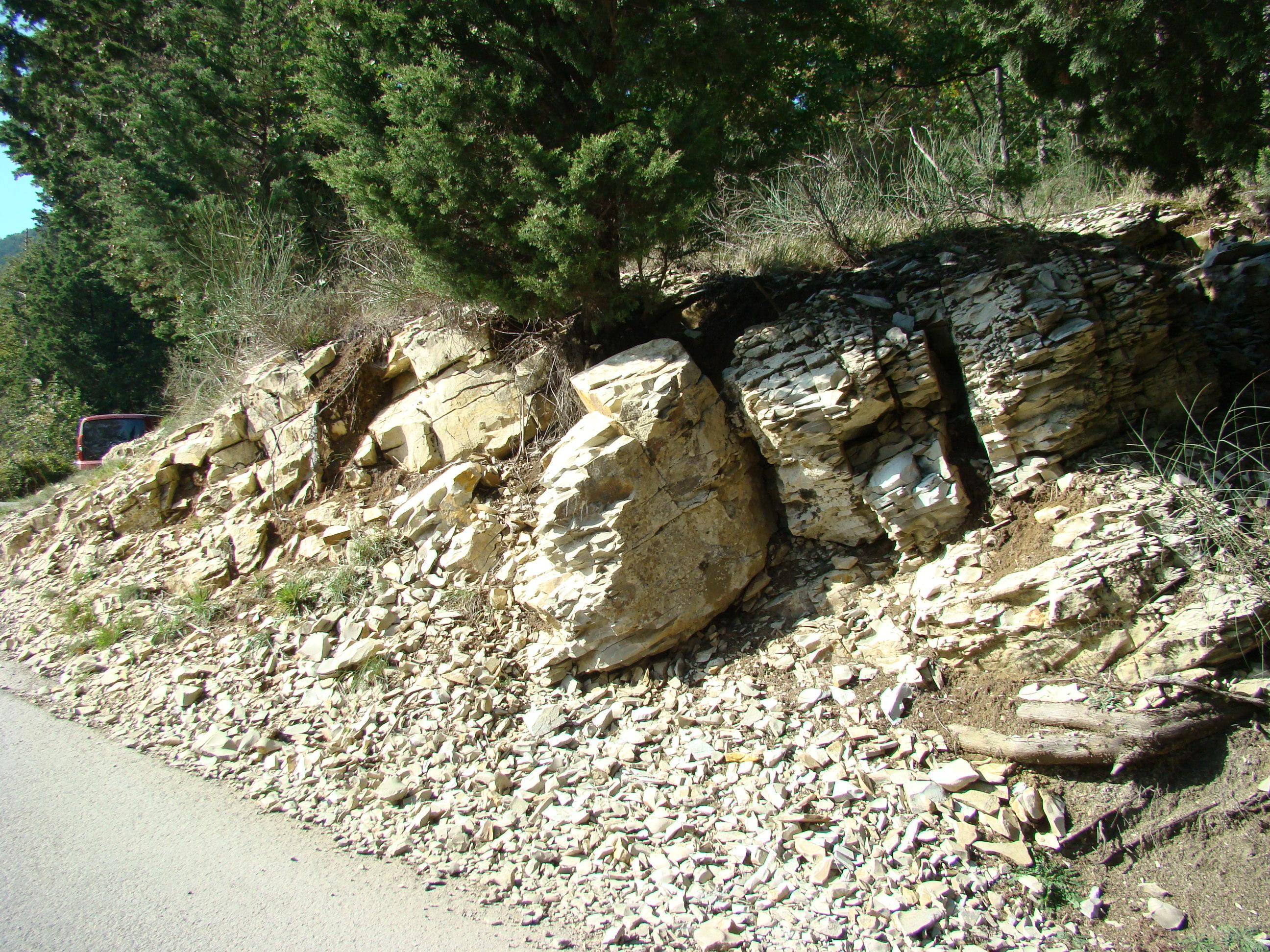 Affioramento roccioso lungo la Via di Montemaggiore (di Giuliana Profeti)