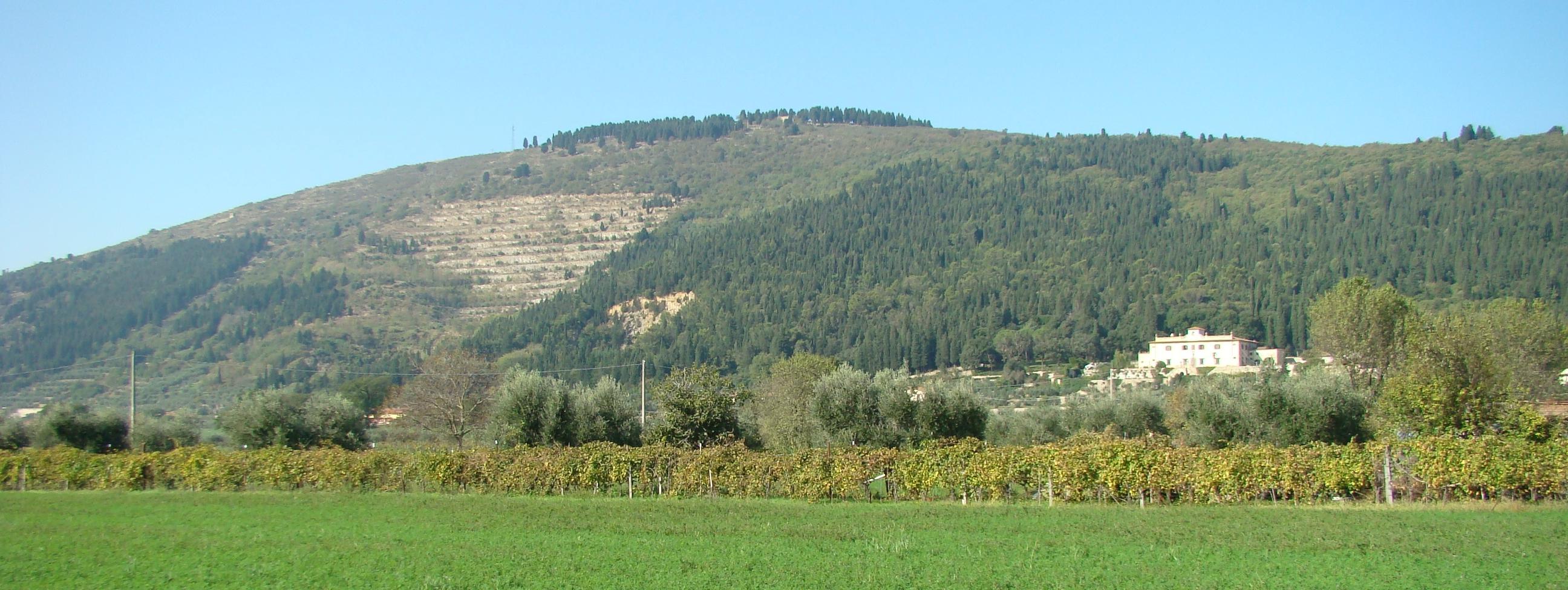 Panorama (di Giuliana Profeti)