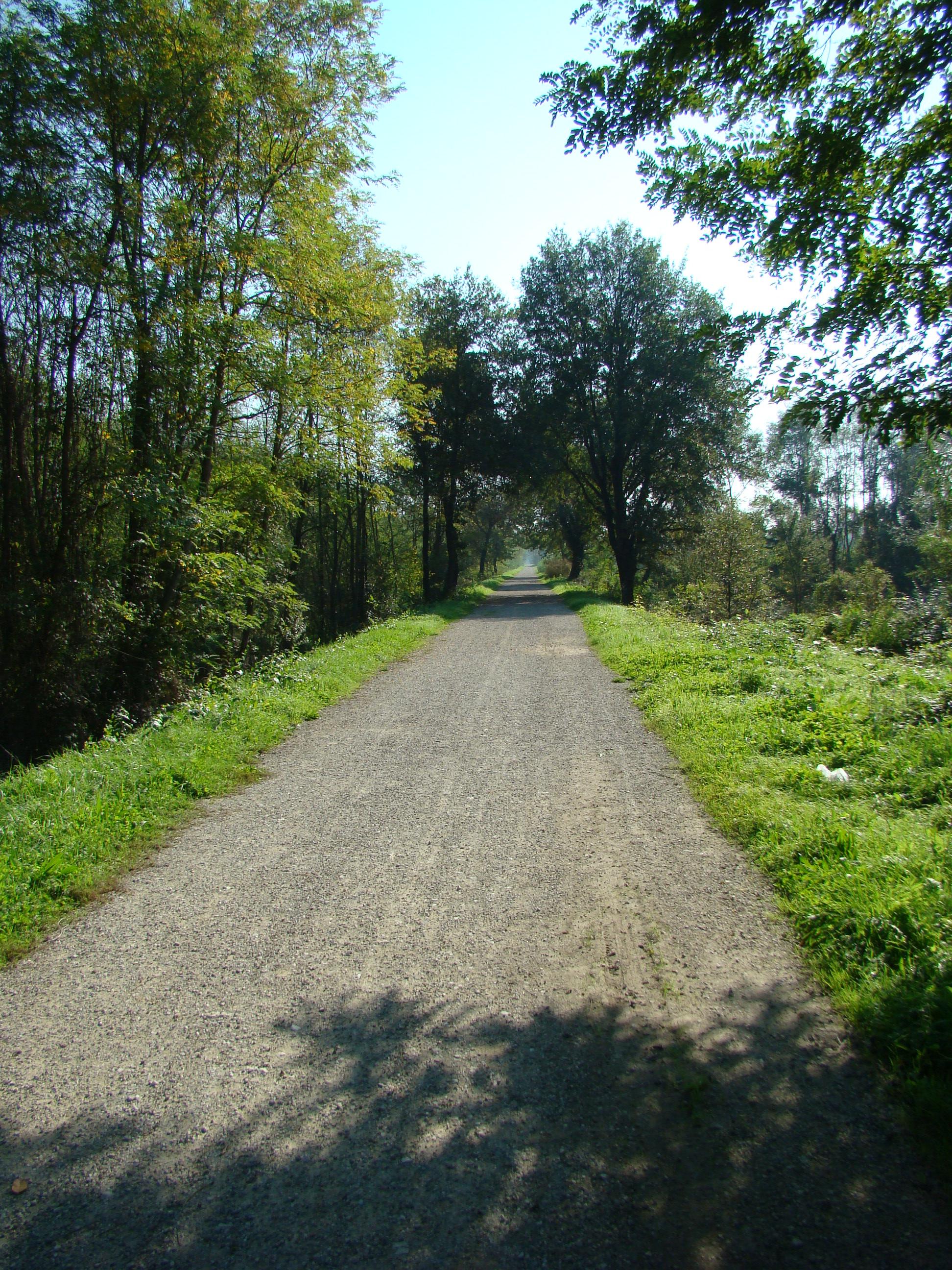 Panorama lungo la pista ciclabile e pedonale (di Giuliana Profeti)