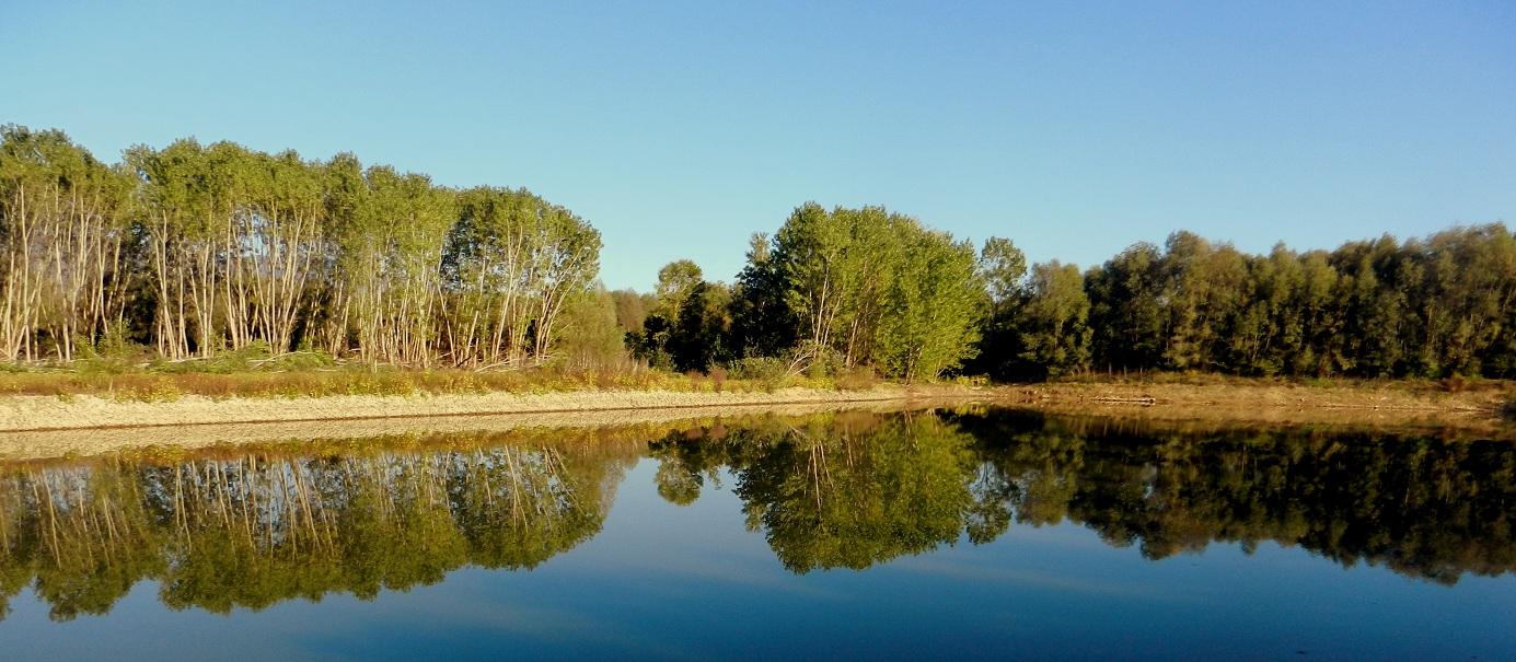 Lago (di Sandro Fabrizi)