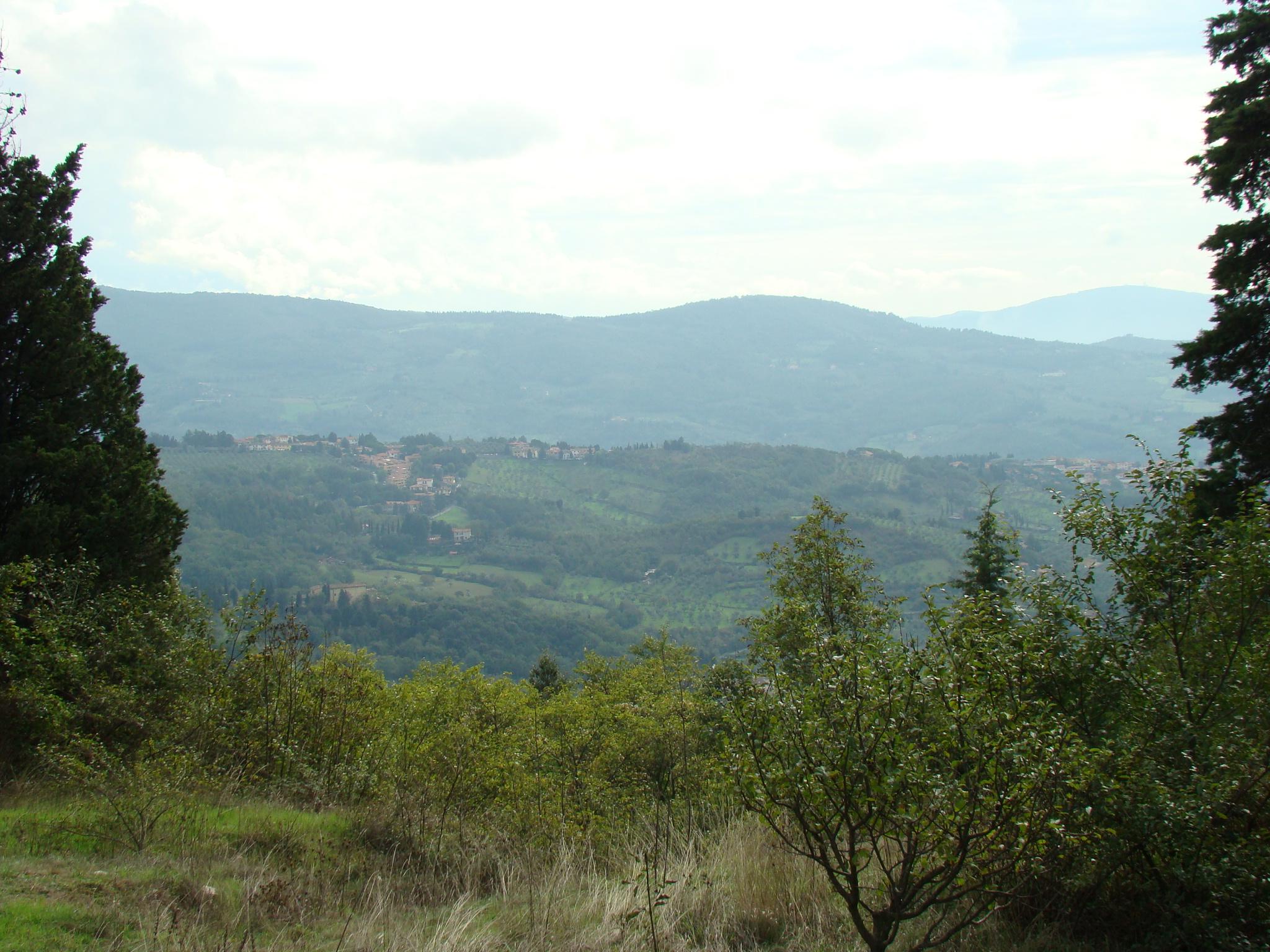 Panorama dalla Cappella di Ceppeto (di Giuliana Profeti)
