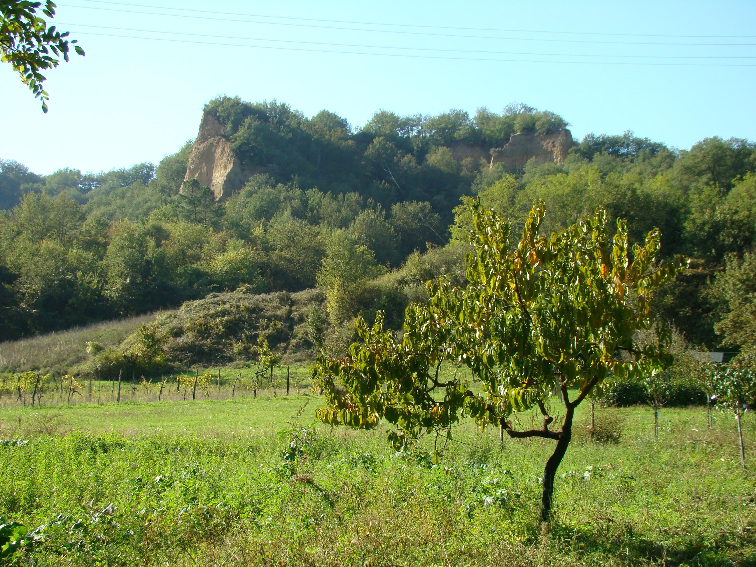 Panorama sulle Balze (di Giuliana Profeti)