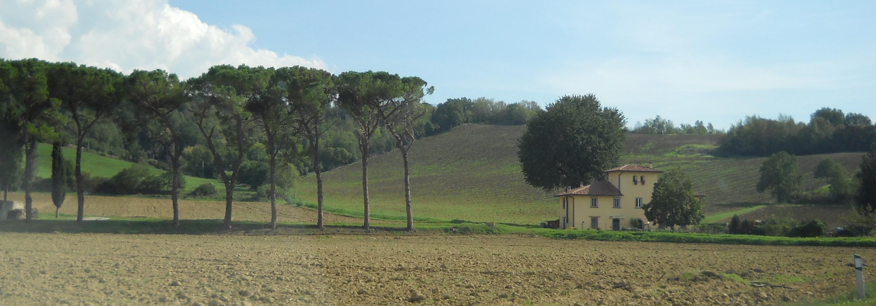 Panorama in località Fornello (di Giuliana Profeti)