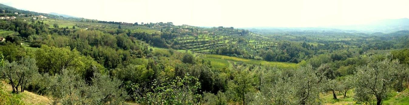 Panorama dalla località La Ripa (di Giuliana Profeti)