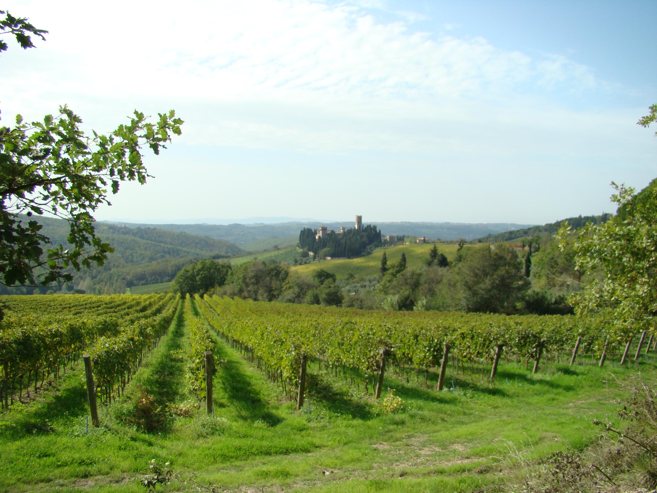 La Badia a Passignano vista dalla Strada Vicinale di Greve (di Giuliana Profeti)