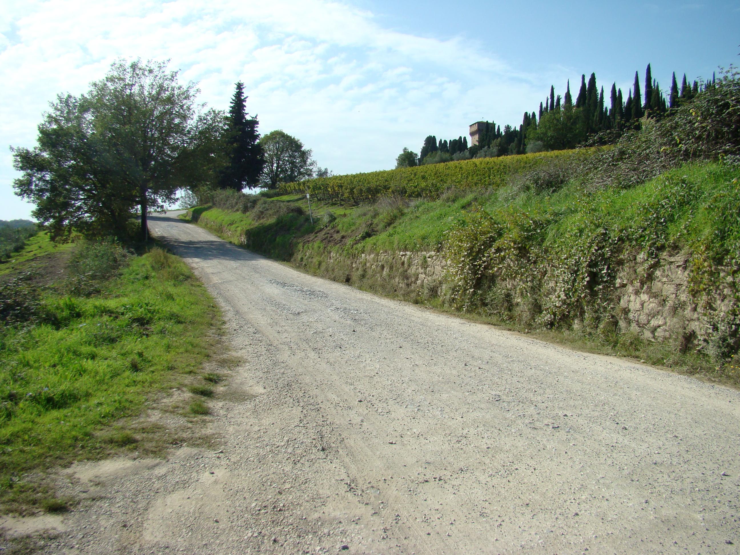 Strada di Poggio al Vento (di Giuliana Profeti)
