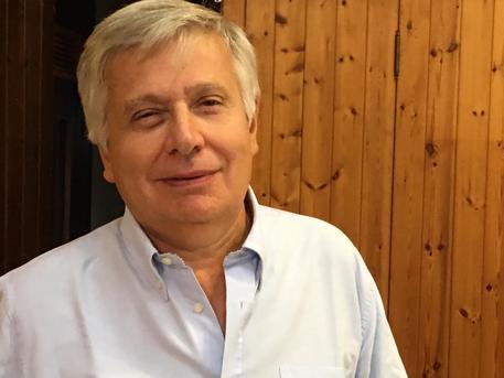 Giancarlo Pontiggia (foto Ansa)