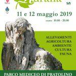 Il manifesto di Ruralia (edizione 2019)