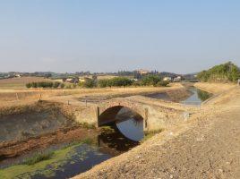 Strade etruschi