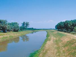 L'oasi di Arnovecchio nel Padule di Fucecchio - Canale